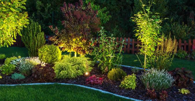 Landscape lighting charlotte nc chop chop landscaping backyard designs mozeypictures Gallery
